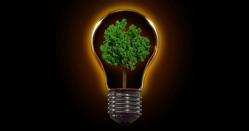 """Event Specialist launches carbon-neutral events"""""""